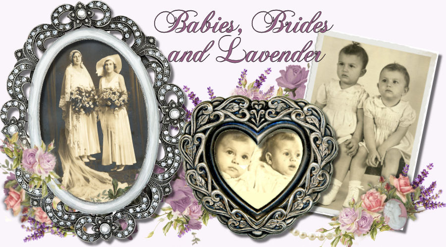 Babies Brides and Lavender